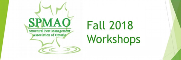2018 SPMAO Fall Workshop – Kingston